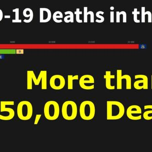 COVID -19 Deaths in the United States, by State