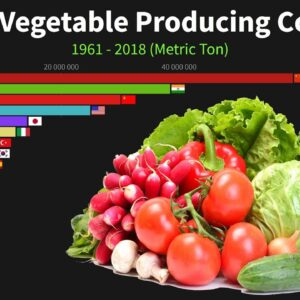 Largest Vegetable Producing Countries