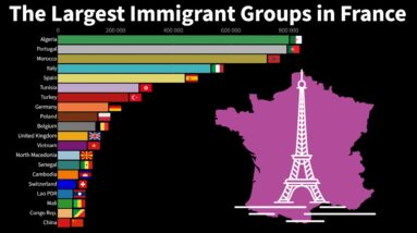 The Largest Immigrant Groups in France (By Country of Birth)