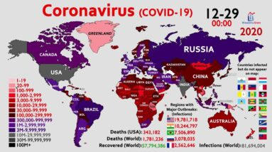 The Road to 80 Million Infections: Coronavirus in 2020