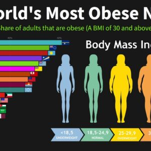 The World's Most Obese Nations