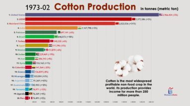 Top 20 Cotton Producing Countries (1960-2020)