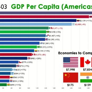 Top 20 Country in the Americas by GDP Per Capita (1960-2020)