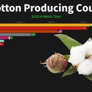 Top Cotton Producing Countries from 1960 to 2019