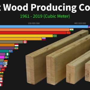 World's Largest Wood Producing Countries from 1961 to 2019