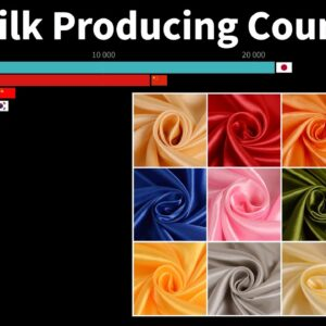 World's Top Silk Producing Countries (from 1960 to 2020)
