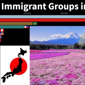 The Largest Immigrant Groups in Japan from 1960 to 2020 (By country of birth)