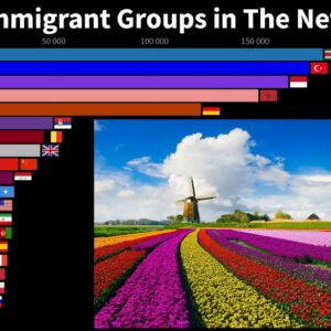 The Largest Immigrant Groups in The Netherlands by Country of Birth